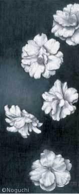 【野口武美:ツバキ(園芸品種) Camellia cvs.】